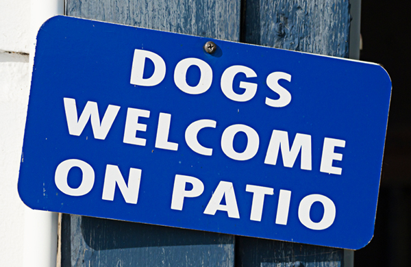 Dog Friendly Patio sign