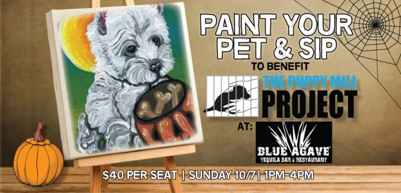 Paint Your Pet event October 7 2018
